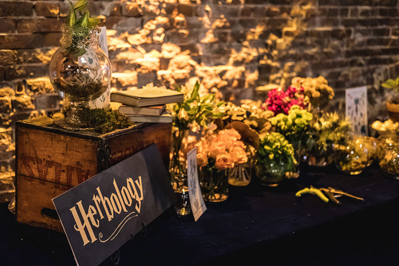 Accio magical Hogwarts-themed party (to benefit a couple adopting a child!)