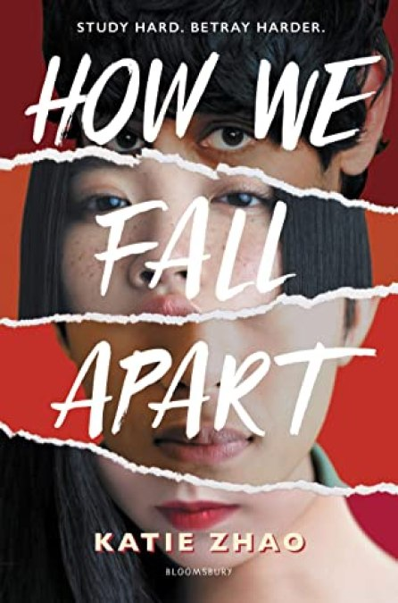Photos of four students faces are ripped apart and the pieces stuck together in a collage of two pairs of eyes, and two mouths. Book Cover.