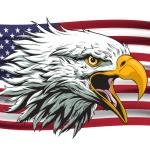 Angry Eagle with Flag