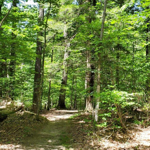 Ferncliff Trail