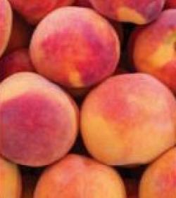 Peaches Nectarin Al Maya Offers