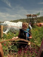 boom permaculture