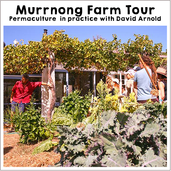 Murrnong Farm Tour. Off-Grid Living Festival. Events Victoria