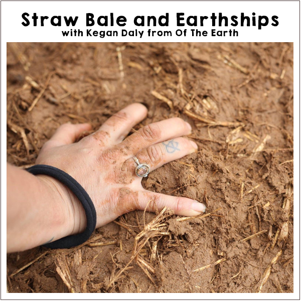 Strawbale and Earthships workshop