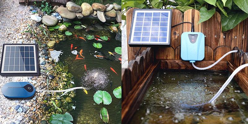 Best Solar Aerators for Ponds
