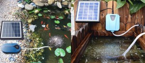 Best Solar Aerators for Ponds: 3 Most Selling Solar Air Pumps for Ponds and Aquariums