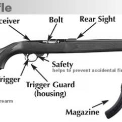 Basic Gun Diagram Mazda B2200 Stereo Wiring Firearm Basics Parts Of A Rifle
