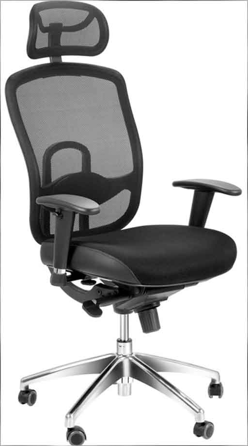 USE OF BACK SUPPORT CUSHIONS IN ERGONOMIC CHAIRS  Chair
