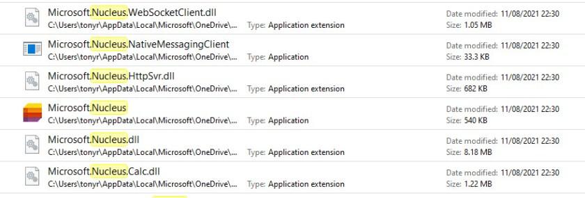 Microsoft Nucleus files on a PC