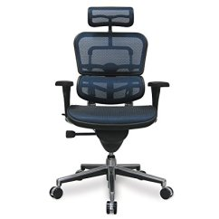 Best Office Chairs For Lower Back Pain Home Theater India Top 3 Chair Eurotech Ergohuman Mesh With Lumbar Support