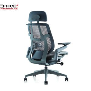ERGOMAN Low Back Chair