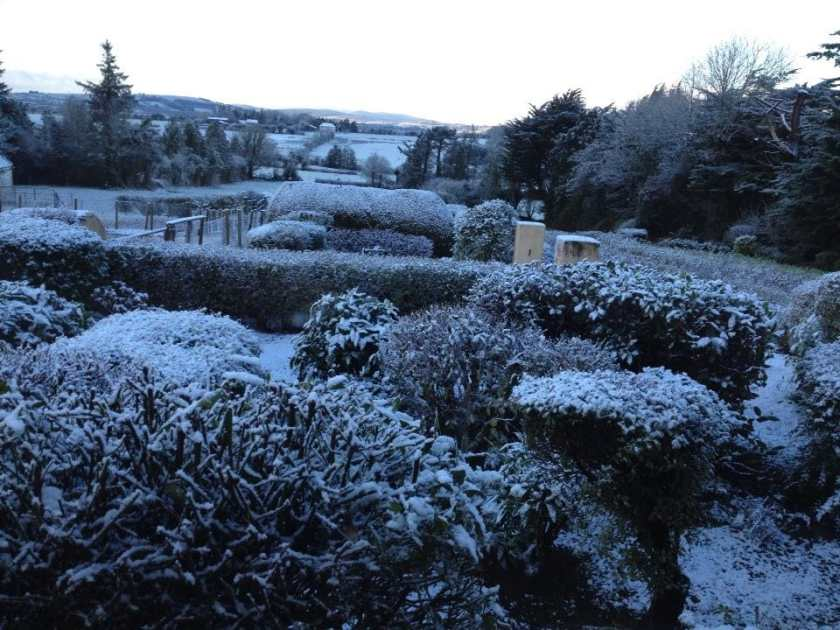 Office Mum: snow covered garden