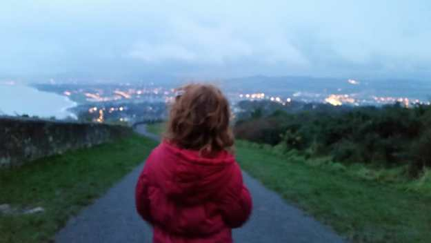 winter on Killiney Hill - Office Mum
