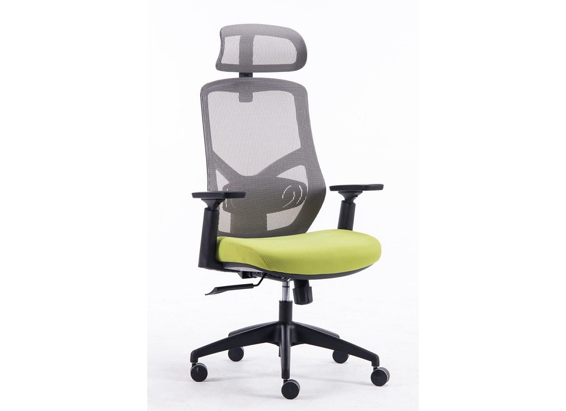 office chair toronto tuscan dining chairs executive ergonomic