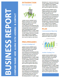 business-report-template