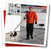 cunard cruises queen mary 2 dog walkers