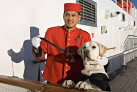 cunard dog walker queen mary 2