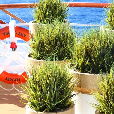 Viking cruises sky cruise ship potted plants