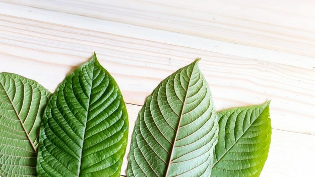 Find the Right Kratom Strain | Kratom Tropical Smoothie For A Refreshing Twist
