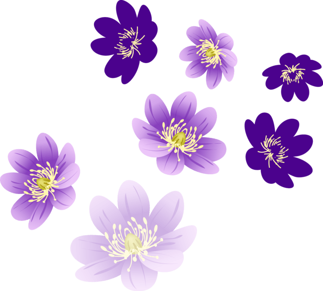 vector flowers png official
