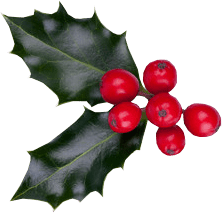 christmas berries psd official