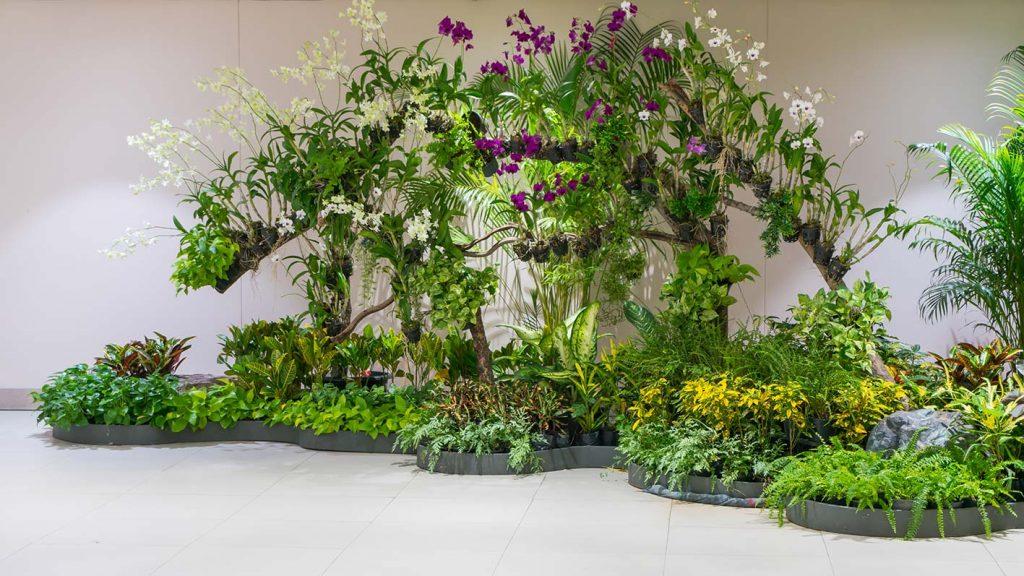 Cura del giardino Verona e ulteriori servizi di manutenzione del verde