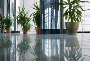 Come scegliere i vasi per piante Officina del verde Verona