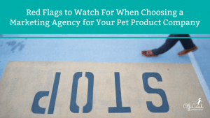 picking the right marketing agency