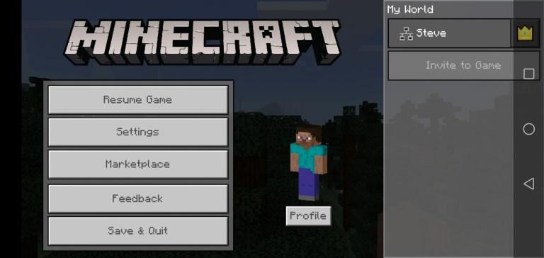 Screenshot of Jenny Mod Minecraft Apk