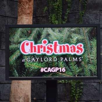 Christmas at Gaylord Palms 2016