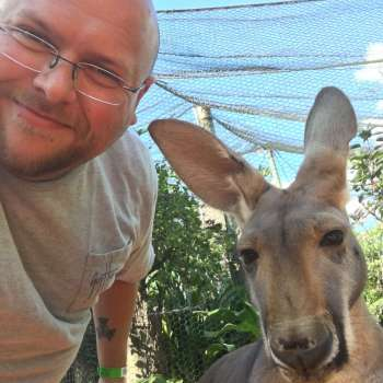 Australian Walkabout Gets You Close To The Kangaroos At Busch Gardens