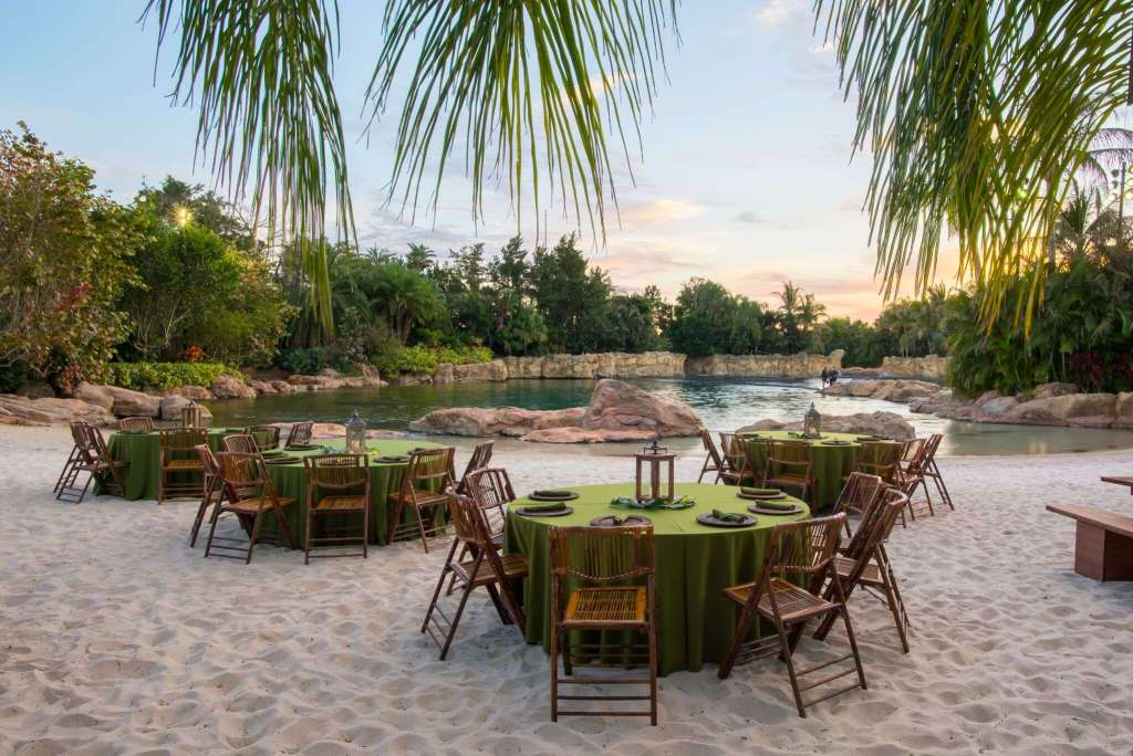 Paradise Nights at Discovery Cove