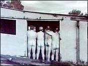 Nakedfarmer