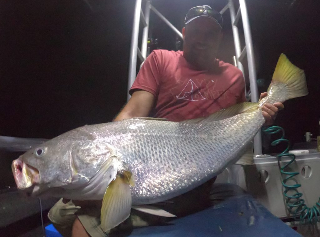 Black Jewfish with Offshore Boats | Darwin night fishing charters