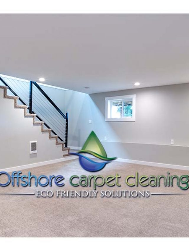 Organic Cleaning in New Jersey