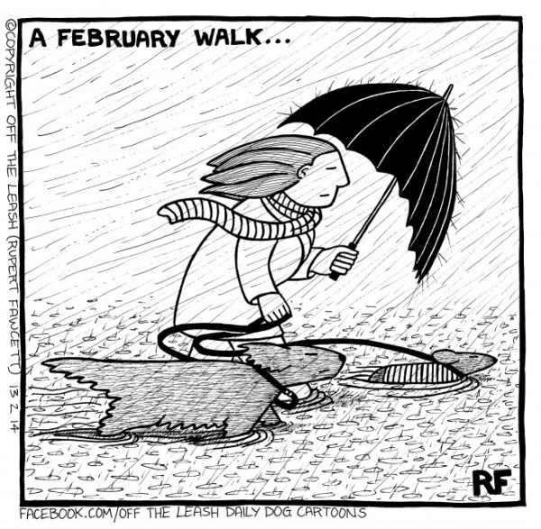 Off The Leash Dog Cartoons Off The Leash A February Walk