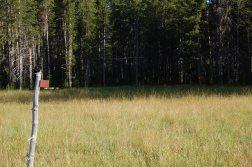 Follow the blazes across the Winter Creek meadow to find IC5.