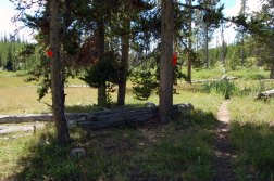 Find this set of blazes near the patrol cabin before you cross Winter Creek