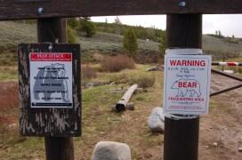 Posted Bear Warning!