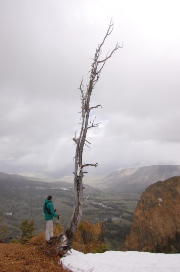 Overlooking Mammoth and Cathedral Rock