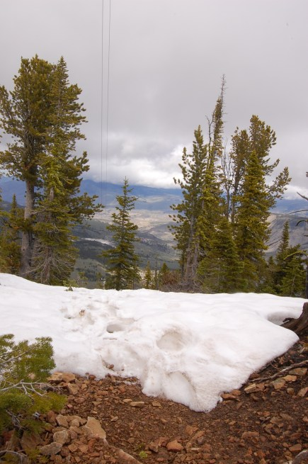 Snow at the top of Bunsen Peak