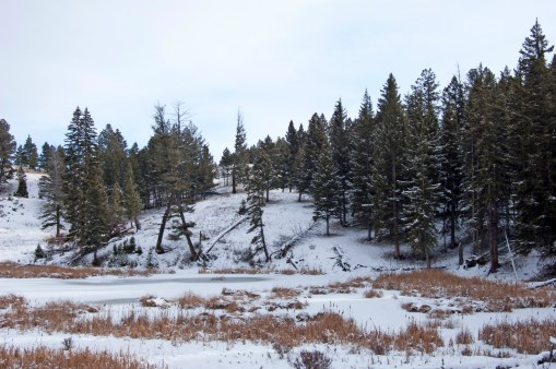 The first of the Beaver Ponds