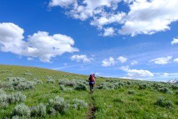 Hike through beautiful sagebrush
