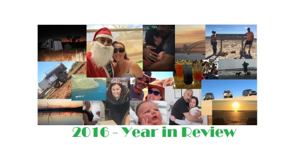 2016-year-in-review