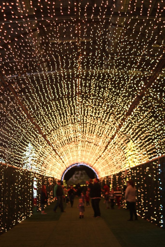 Calgary Noel Lights