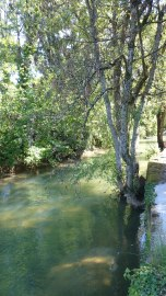 Arbois river
