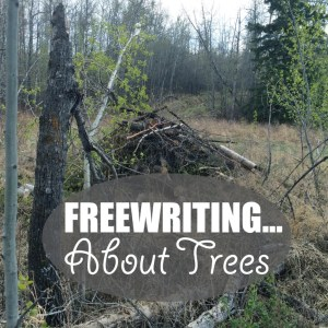 Freewriting... About Trees