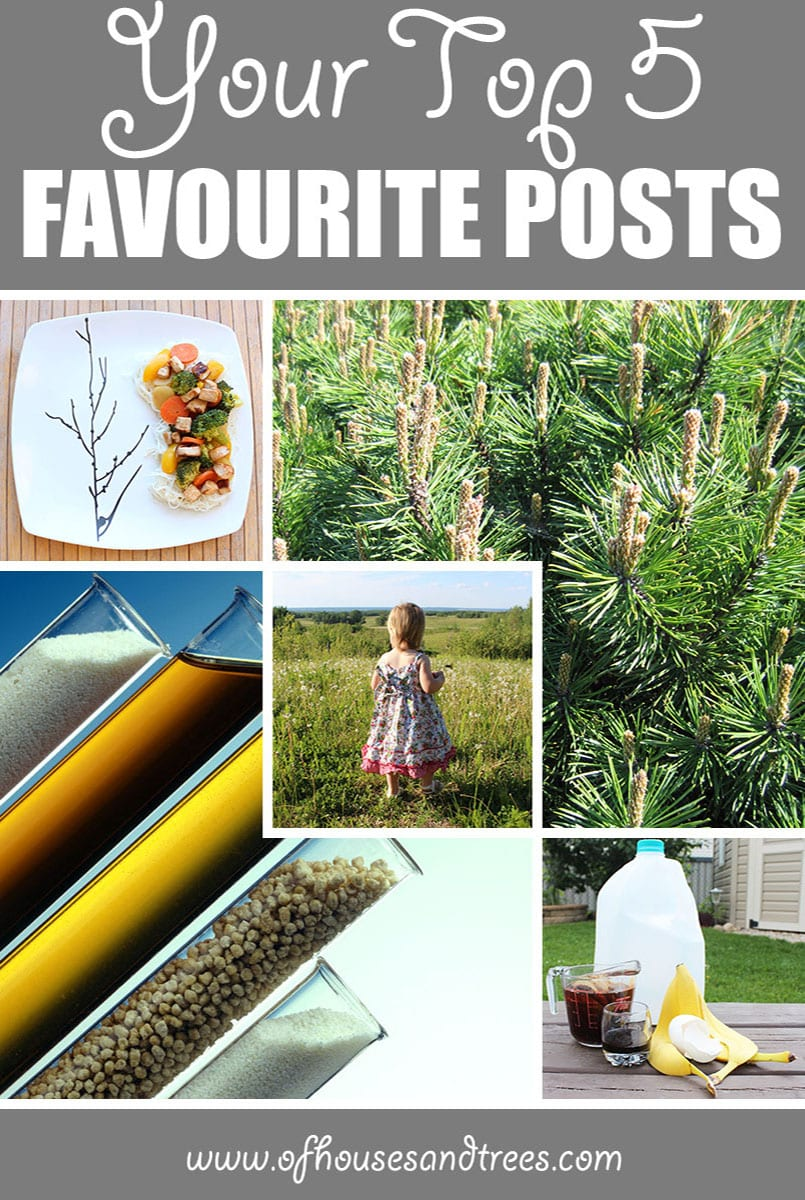 Favourite Blog Posts   Happy anniversary to me and Of Houses and Trees! Here are the top five favourite blog posts that received the most visits since March 31, 2016.