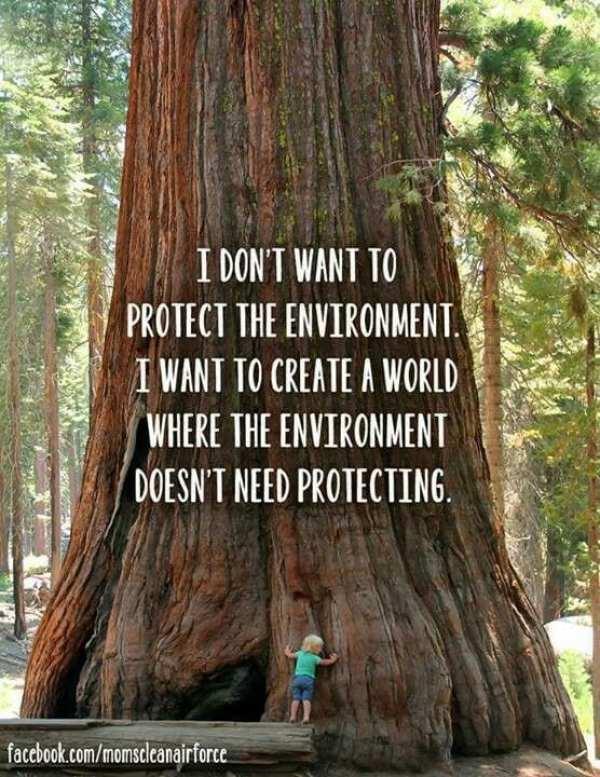 Sustainability Quotes: