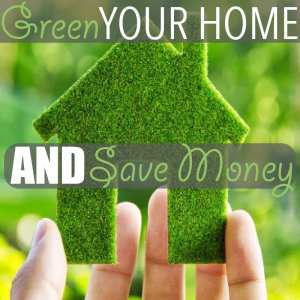 Green Your Home by Of Houses and Trees | Here are five ways you can green your home and save a few dollars all at the same time, including shopping secondhand, cleaning with vinegar and... sharing!